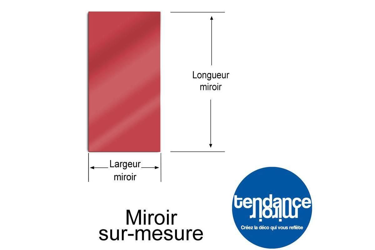 Miroir de jardin 50x50 cm en acrylique tendance miroir for Miroir 50 x 150