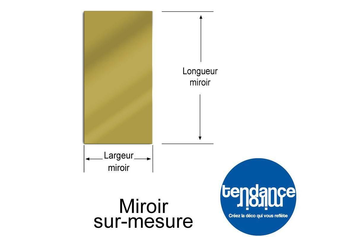 Garten spiegel 150x50 cm acryl tendance miroir design for Miroir sur mesure