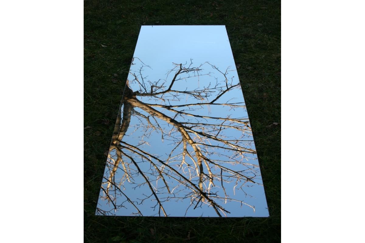 Miroir De Jardin 100x100 Cm En Acrylique Tendance Miroir
