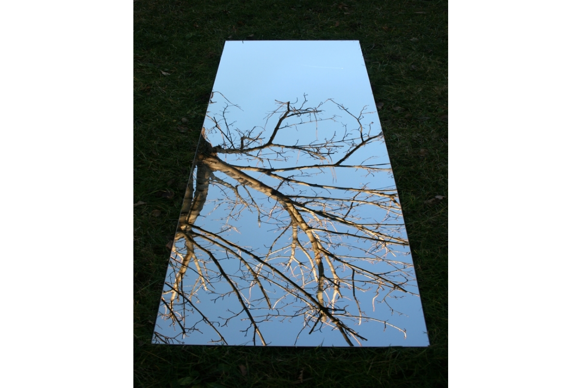 miroir de jardin 50x25 cm en acrylique tendance miroir design. Black Bedroom Furniture Sets. Home Design Ideas