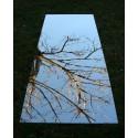 Miroir de jardin 100x50 cm en acrylique